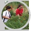 中川牡丹园林的工程做的让我们很满意!