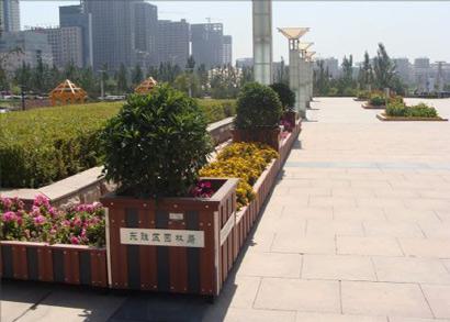 鄂尔多斯东胜区广场绿化