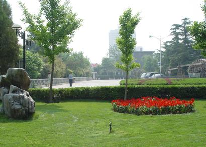 西固银泰逸翠园绿化工程